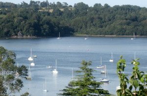Jill Treseder - My view of the River Dart in Devon